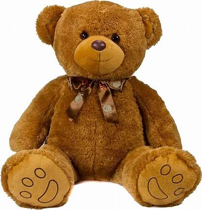 Teddy Bear Transparent Bears Imgbin Pngimg