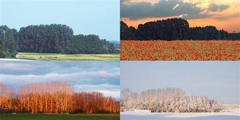 Im Herbst Und Winter by Fr 252 Hling Sommer Herbst Winter Foto Bild