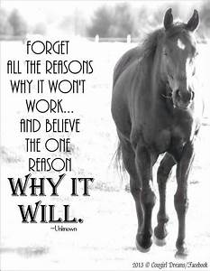 Horse quote | Quotes | Pinterest | Horse, Equestrian ...