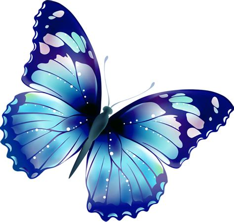 large blue butterfly clipart clipground