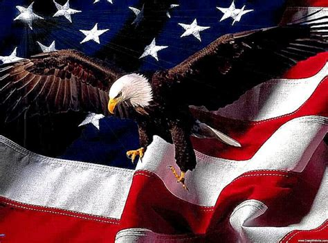 Animated American Flag Wallpaper - patriotic eagle wallpapers free best free hd wallpaper