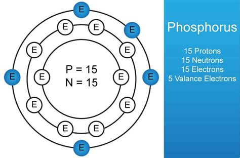 Phosphorus Protons by Periodic Table Info The Atomic Is 15 15 Neutrons 15 El
