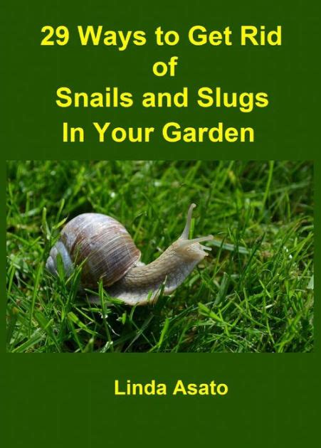 how to get rid of slugs 29 ways to get rid of snails and slugs in your garden by linda asato nook book ebook