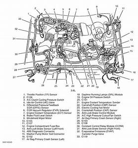 2002 Mustang V6 Engine Diagram