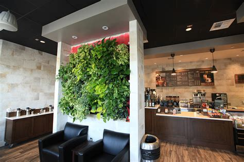 It was really funny as my dad and friend kept asking random people. Peet's Coffee in San Diego | LiveWall Green Wall System