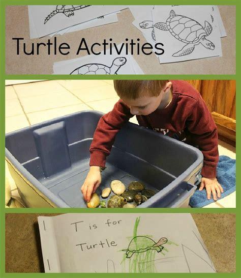 turtle activities for preschoolers 789 | turtle collage