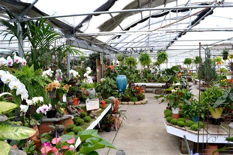 best plant nurseries emily daniel s succulent adventure at family tree nursery our waldo bungie