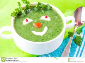 healthy soup with spinach for children royalty free stock photography image 30059497