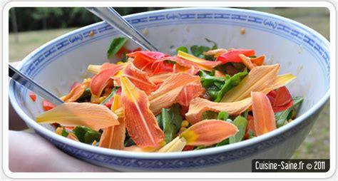 recettes de cuisine light recette bio minceur salade composée à l hémérocalle et