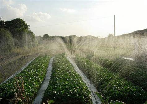 agriculture sprinkler irrigation system micro spray hose