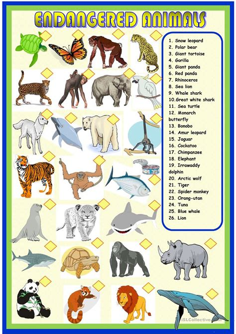 endangered animals worksheets ks1 homeshealth info