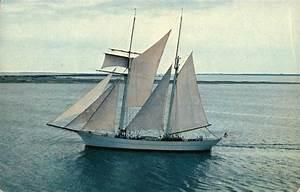 Brigantine  U0026quot Yankee U0026quot  Schooner Nantucket  Ma Sailboats Postcard