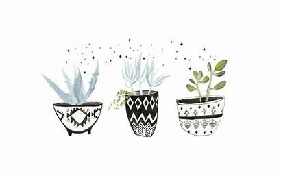Desktop Watercolor Succulents Wallpapers Plant Backgrounds Computer