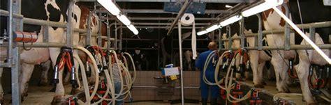 brumisation salle de traite vache laiti 232 re brumisateur
