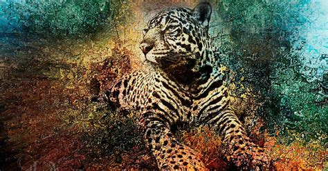 la amorosa historia del jaguar  el colibri tuul