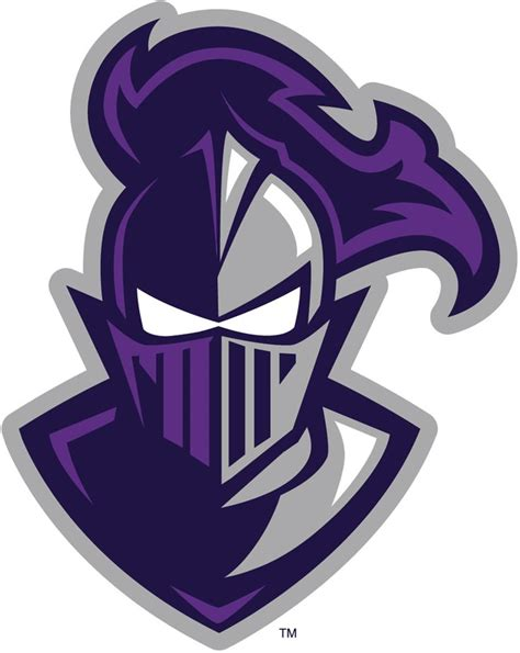 furman paladins alternate logo  knight logo
