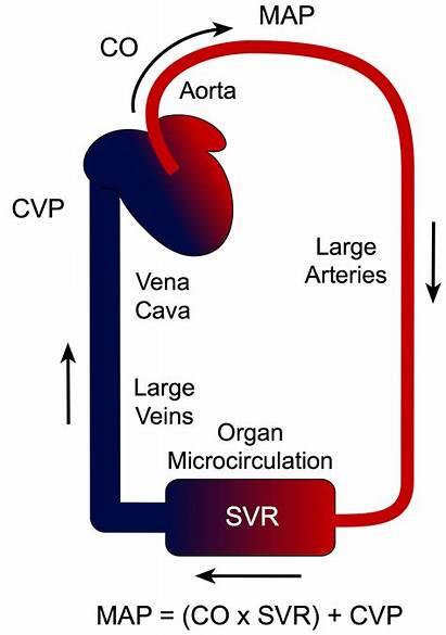 Pressure Arterial Mean Blood Map Formula Calculator