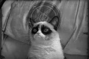 pin grumpy cat art on pinterest