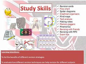 Study Skills Revision Cards Flow Chart Spider Diagrams