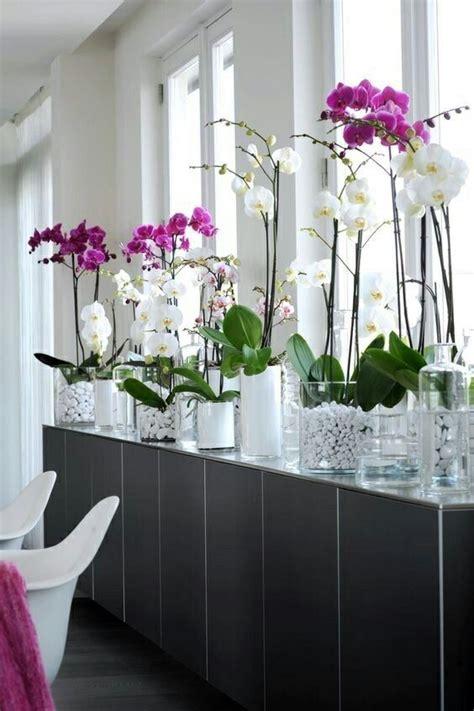 bouquet d 39 hiver loulou 1000 singular object s bouquet d 39 orchidées blanches
