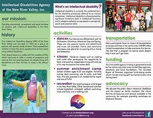 Intellectual Disabilities Agency Of The Nrv Brochure On Behance