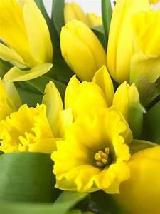 Die Farbe Gelb : die farbe gelb weiss schwarz ~ Watch28wear.com Haus und Dekorationen