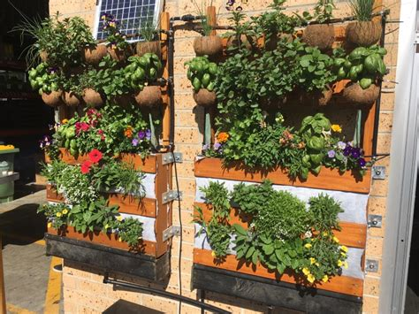 Plants Used In Vertical Gardens by Space Plant Vertical Garden Teleplantathic