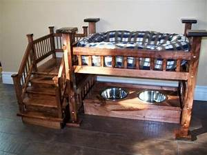 Dog bunk bed with food amanda we need to become for Best luxury dog beds