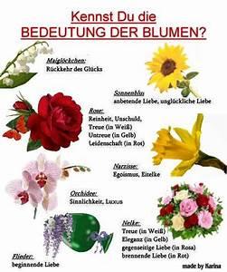 Blumen Und Ihre Bedeutung : die etwas andere gb bilder seite ~ Frokenaadalensverden.com Haus und Dekorationen