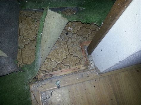 remove asbestos backed vinyl flooring