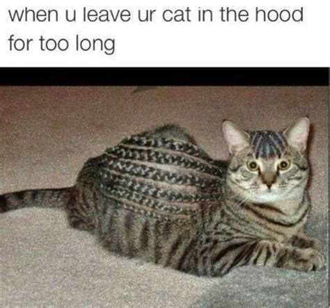 Funny Hood Memes - trenzas africanas para este verano quotes