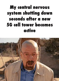 central nervous system reacts   walter white breaks