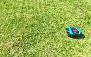 Robot Tondeuse Sans Fil Périphérique : test robot tondeuse bosch indego 350 connect la ~ Dailycaller-alerts.com Idées de Décoration
