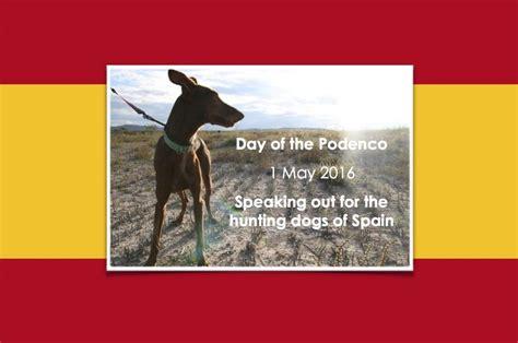 vet  join protest  spanish hunting dog treatment
