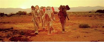 Coldplay Elephant Paradise Desert Gifs Animated Giphy