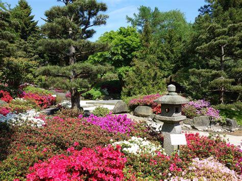 Botanischer Garten Hamburg Pflanzenbörse by B 252 Rgerschaft St 228 Rkt Den Loki Schmidt Garten Botanischen