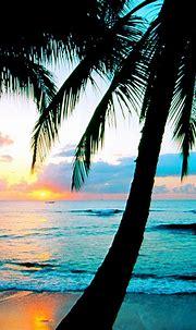 Free download beach desktop wallpapers download Desktop ...