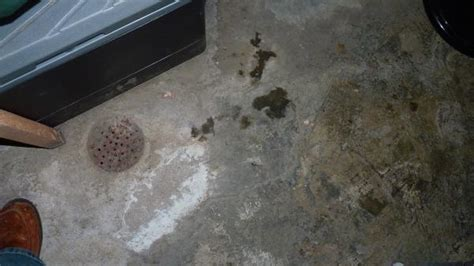 indepth question  leaking basement dirt crawlspace