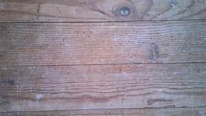 pleins de petit trous de bete dans du vieux parquet With vieux parquet qui grince