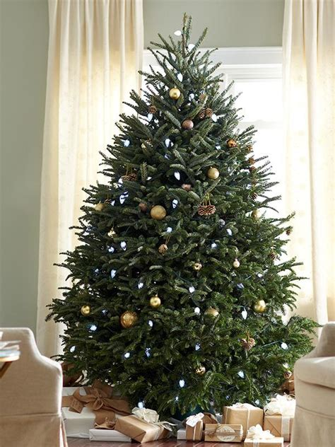 christmas tree funnel home depot real vs artificial trees the home depot canada