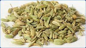 Fennel Seeds In Hindi Name | www.pixshark.com - Images ...