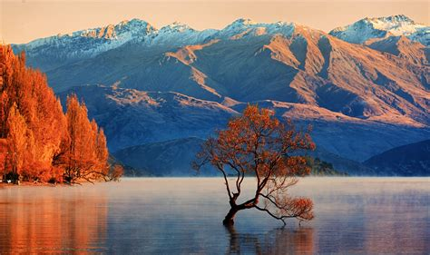 zealand travel lonely planet
