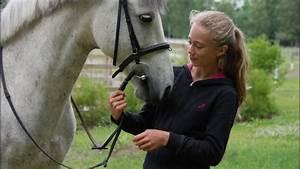 Cheval De Guerre Streaming Vf : film le cheval de klara 2010 en streaming vf complet filmstreaming hd com ~ Maxctalentgroup.com Avis de Voitures