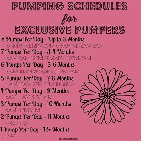 1000 Ideas About Pumping Schedule On Pinterest
