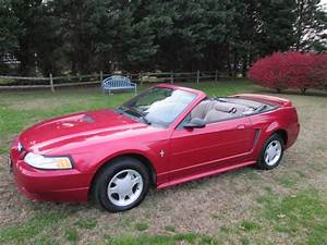 LOOK AT THIS PRETTY PONY! 2000 Ford Mustang V6 Convertible only $4,995 | Cape Gazette
