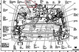 Chevy 3 8 Engine Diagram : 2000 chevy impala engine diagram 2000 chevy impala engine ~ A.2002-acura-tl-radio.info Haus und Dekorationen