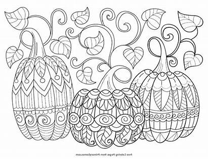 Autumn Colouring Coloring Pages Fall Adults Books