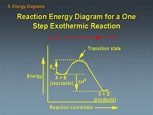 Wiring Diagram  14 Energy Diagram For Exothermic Reaction