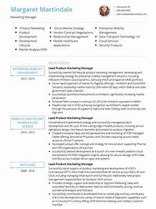 cv templates professional curriculum vitae templates With cv template with photo