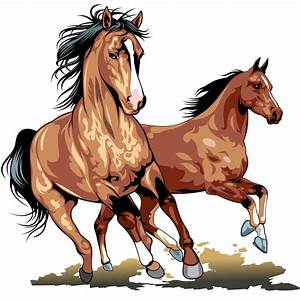 Horse Vector Free - Cliparts.co